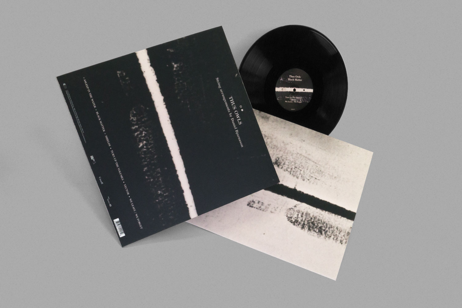 Thus Owls Black Matter EP Vinyl