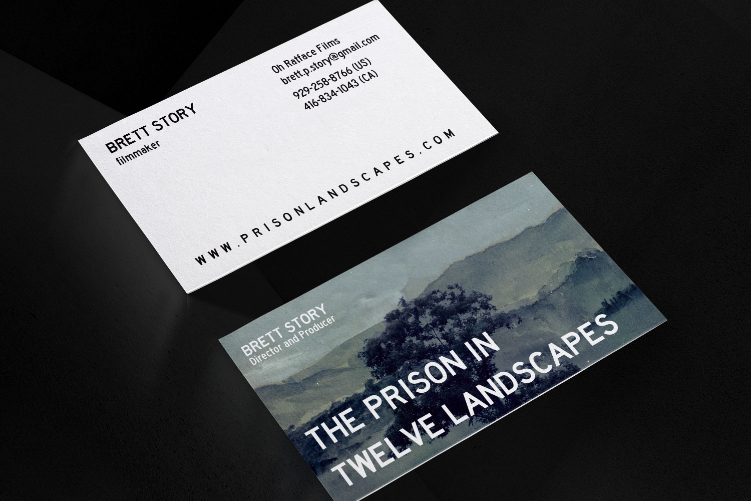 The Prison In Twelve Landscapes Business Cards