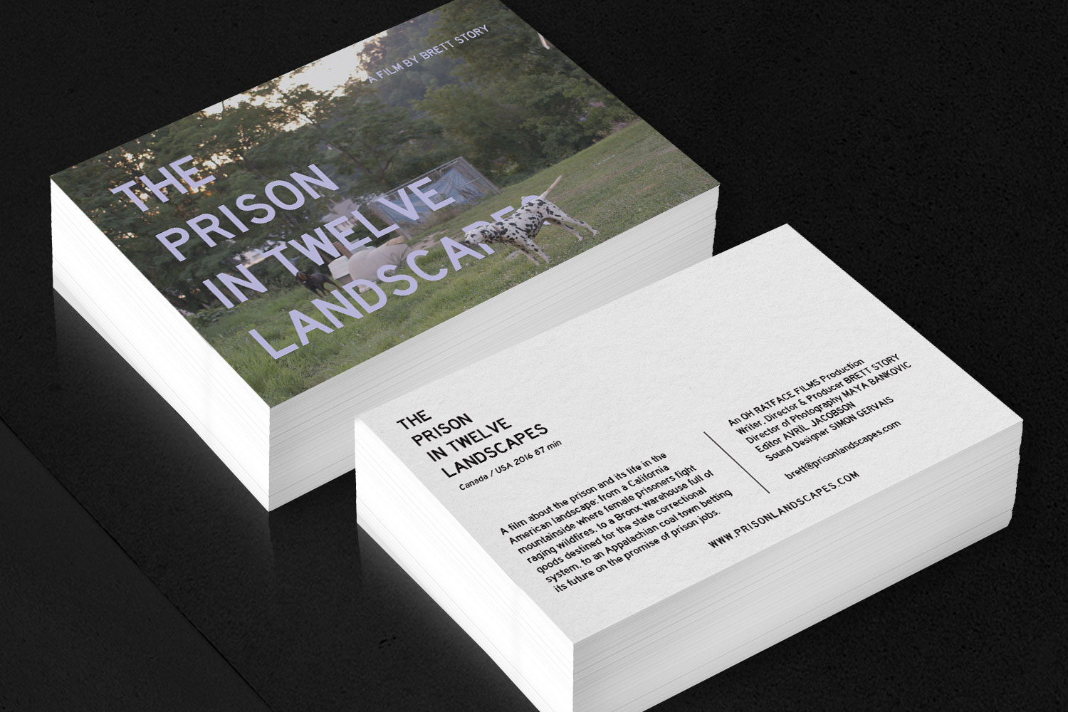 The Prison In Twelve Landscapes Post Cards